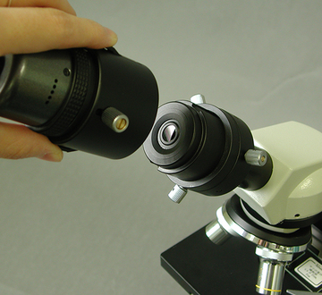 scorp-on-mvc2-f2.jpg