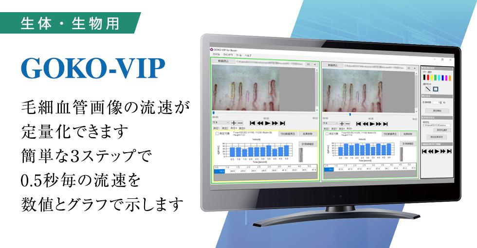 goko-vip-main.jpg
